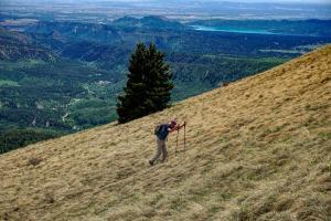 Baldy Peak - 6/25/19