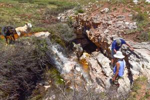 Cave Basin Geology Hike - June 2021