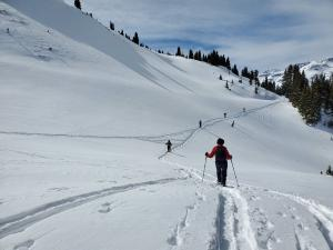Red Mountain Snowshoe - 2/15/20