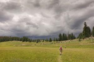 Snowden Mountain - July 16