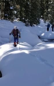 Recent Snowshoes - 1/30, 2/1 2020
