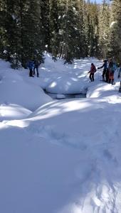 snowshoe 02