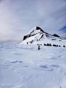 snowshoe 05