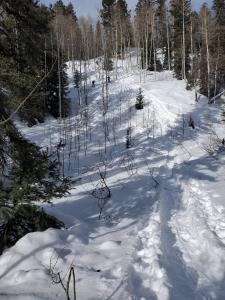 Snowshoe Spud Lake - 1/11/20