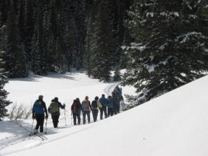 Snowdon Meadows Snowshoe - 2/8/20