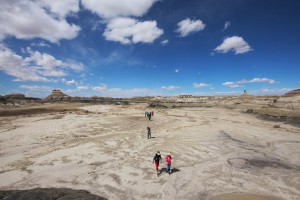 Bisti Badlands - March 2016